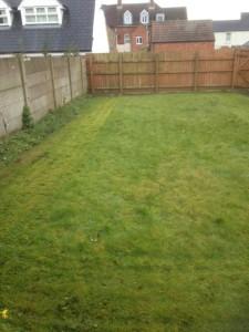 Lawn Care Swindon