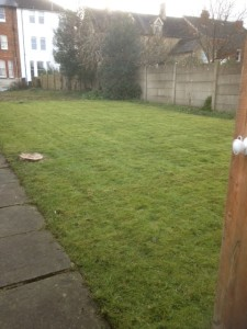 Lawn Care In Swindon